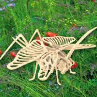 Збірна модель Мир деревянных игрушек Саранча Фото