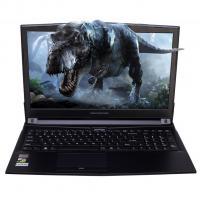 Ноутбук Dream Machines G1060-15 Фото