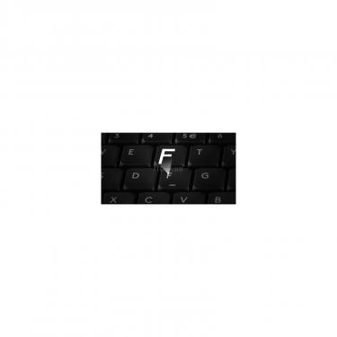 Комплект A4Tech FG1010 Blue - фото 7